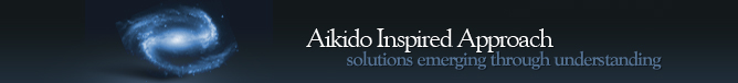 Aikido Inspired Approach - Solutions Emerging Through Understanding